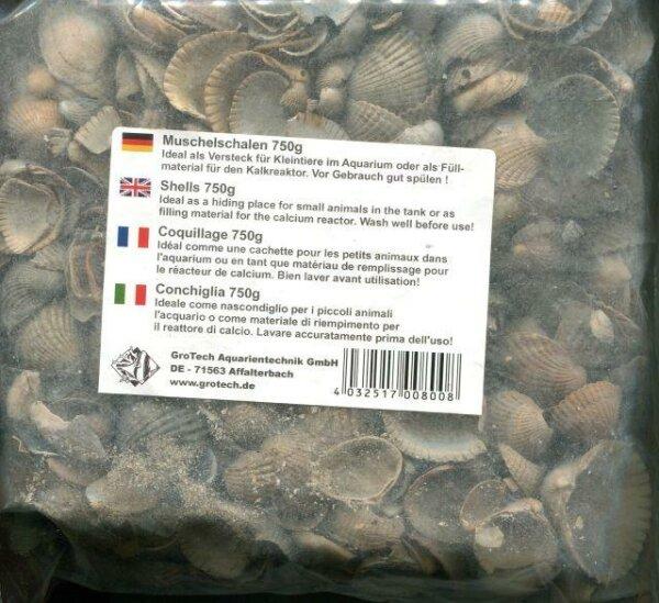 Muschelschalen 750 Gramm